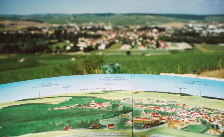 Panorama des vignobles de Chablis