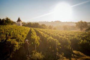 Le vignoble de Gaillac en 2 CV