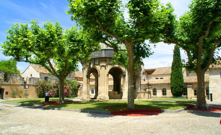 VLA-Chartreuse-Cloître St Jean-3782