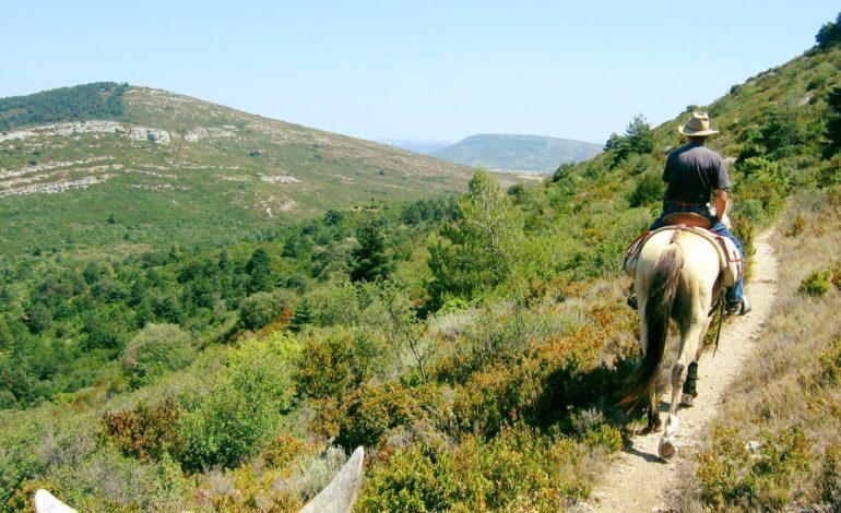 Le vignoble des Corbières…à cheval !-sejouroneologiqueequestre