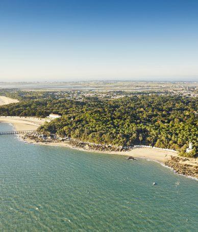 Le célebre Bois de la Chaise à Noirmoutier